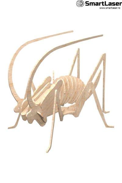 Jucarii Lemn Insecte Cosas