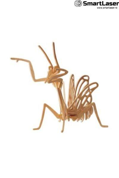 Jucarii Lemn Insecte Greiere