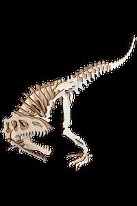 Dinozaur Jucarie Lemn